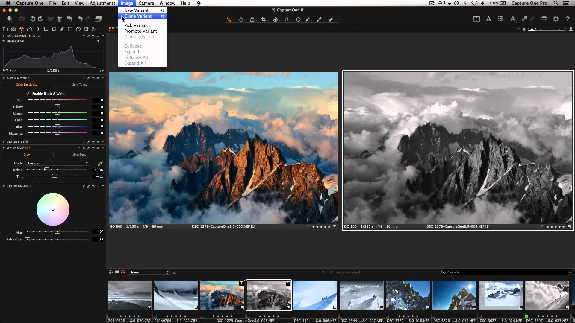 Capture One Pro windows