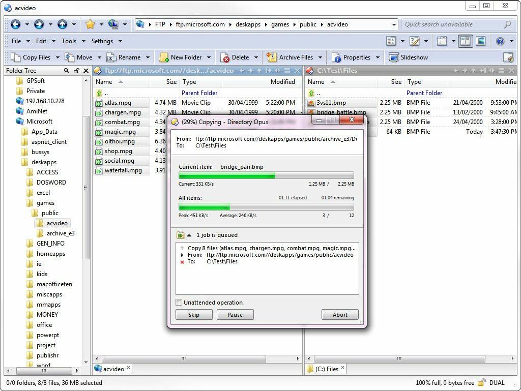 Directory Opus Pro windows