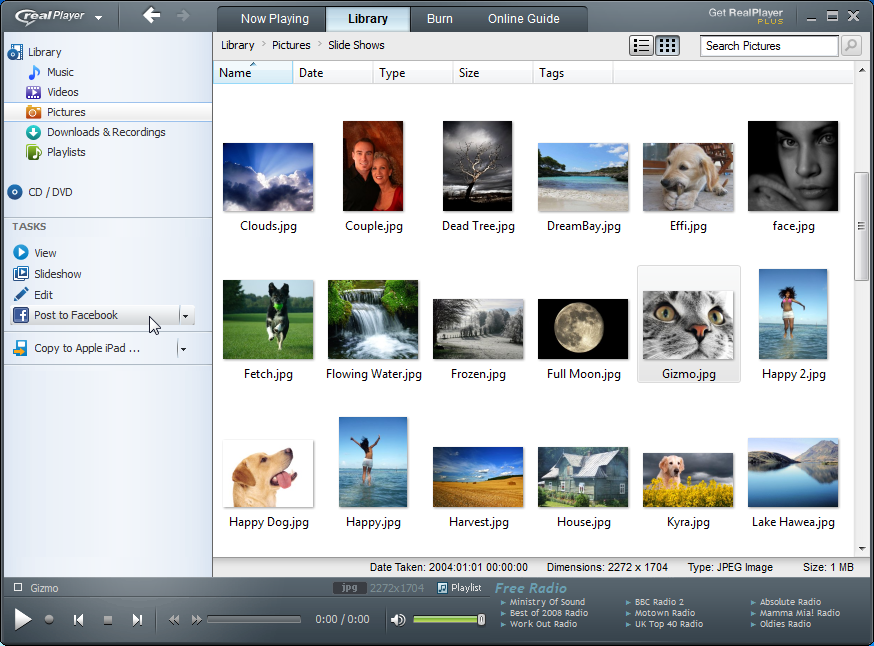 RealPlayer latest version