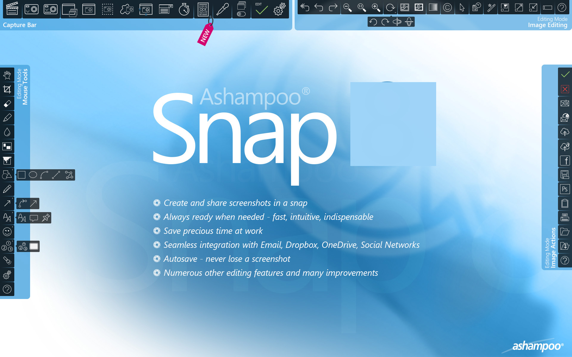 Ashampoo Snap windows